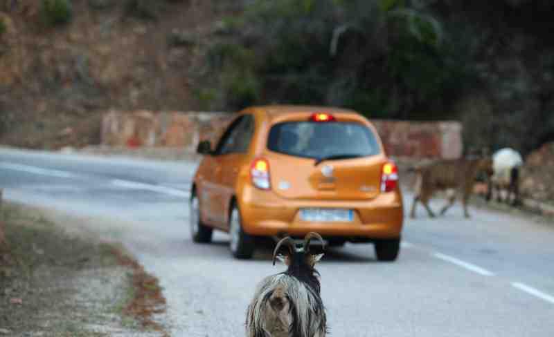Comment arriver en Corse pas cher?