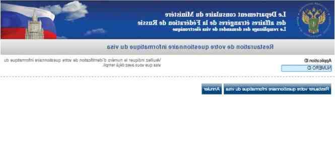 Comment modifier formulaire Visa France VFS ?
