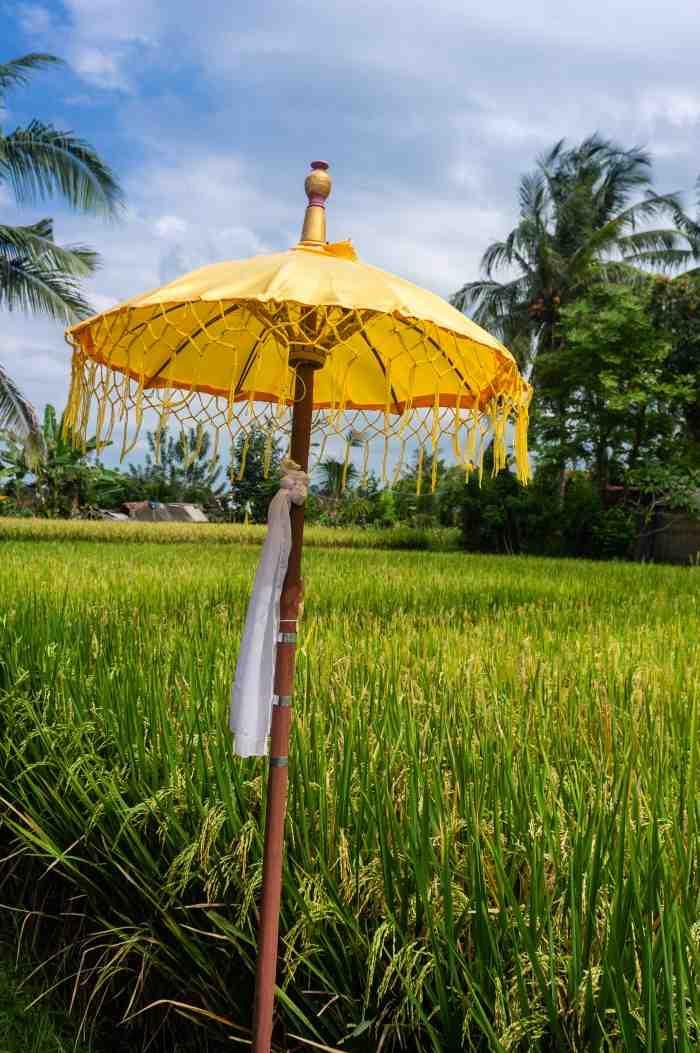 Est-ce que la vie est chère à Bali ?