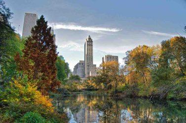 Pourquoi Central Park est dangereux la nuit ?