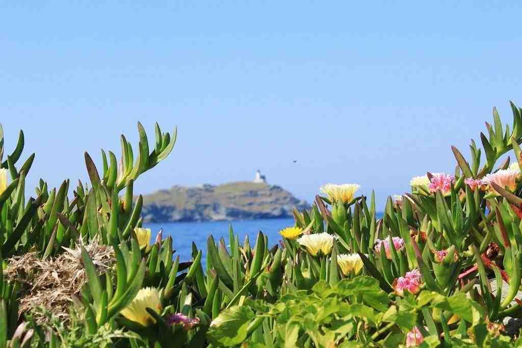 Quand voyager en Corse Météo?