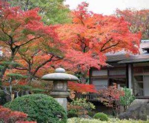 Quel temps au Japon en octobre ?